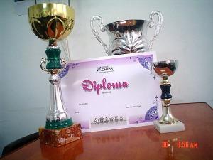 "Cupa ""Cristina Foisor"" si diploma de participare"