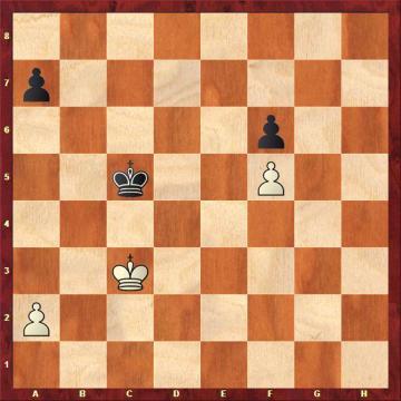 albul joaca a4 sau a3 pentru remiza